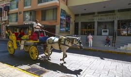 MERIDA-YUCATAN-MEXICO-APRIL-2019: Экипаж лошади вычерченный который туристы могут арендовать для посещения самых красивых пунктов стоковая фотография rf