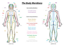 Meridian System Description Chart Female Body Royalty Free Stock Images