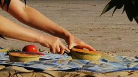 Meriendan en el campo en una playa del río - melón del corte - 4k almacen de metraje de vídeo