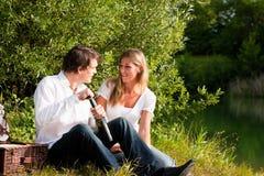 Meriende en el campo en el lago con el vino en verano Foto de archivo libre de regalías