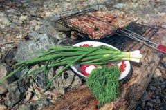 Meriende en el campo en naturaleza con las verduras frescas y la barbacoa Imagen de archivo