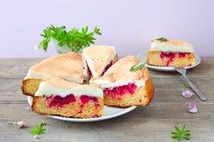 Meringue berry cake. Homemade berry cake with meringue royalty free stock photo
