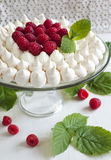 Meringue cake with raspberries. Meringue cake with fresh raspberries Royalty Free Stock Photos