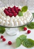 Meringue cake with raspberries Royalty Free Stock Photos