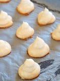 Meringue cookies on a tray. Freshly baked meringue cookies on a baking tray Stock Images