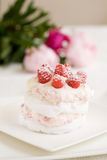 Meringue dessert. Delicious meringue dessert with raspberry cream and fresh raspberries Stock Image