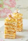 Meringue Layer Cake. Two slices Meringue Layer Cake Royalty Free Stock Photo