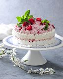 Meringue layer cake with fresh raspberry cream. On white and blue cake stand there is meringue layer cake with fresh raspberry cream. Garnish with mint leaves Stock Images