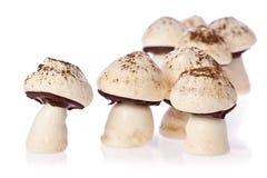 Meringue Mushrooms Royalty Free Stock Images
