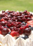 Meringue pavlova cake with berries Stock Photography