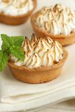 Meringue tart Stock Photography
