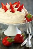 Meringue with whipped cream and strawberries. Stock Photos
