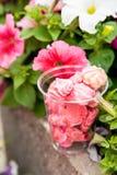 Meringues roses en verre et fleurs dehors Image stock