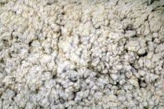 Merino wool texture royalty free stock image