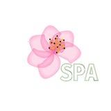 Merk van de salonschoonheidsmiddelen van het bloemembleem het abstracte Beauty Spa de Maniermalplaatje van de ontwerpluxe Royalty-vrije Stock Afbeelding