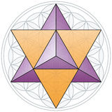 Merkaba And Flower of Life Stock Photography