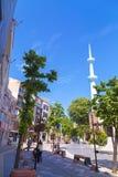 Merkez moské, Yalova, Turkiet Royaltyfri Foto