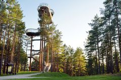 Merkine observation tower, located on a high bank of the largest river in Lithuania, Nemunas, in deep pine forest royalty free stock photos