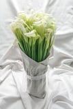 Merkwürdige Blumen, umgedrehter Schnittlauch Lizenzfreie Stockfotos