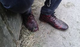 Merkwürdige und einzigartige schwarze und rote Schuhe lizenzfreie stockfotos