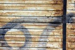 Merla en hogar Imagen de archivo