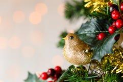 Merle de scintillement d'or sur l'arbre de Noël Copiez l'espace Photo libre de droits