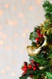 Merle de scintillement d'or sur l'arbre de Noël Copiez l'espace Images libres de droits
