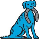 Merle Dog Sitting Biting Horseshoe blu retro Immagine Stock Libera da Diritti