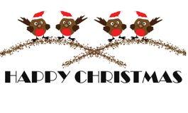 Merles - Noël heureux Images stock
