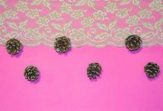 Merletti i confini e le ghiande contro un fondo rosa come concetto delle stagioni cambianti, Natale Fotografia Stock