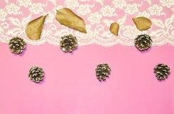 Merletti i confini e le ghiande contro un fondo rosa come concetto delle stagioni cambianti, Natale Immagini Stock