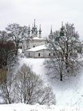 Merletto di inverno Fotografie Stock Libere da Diritti