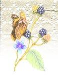 Merletto e farfalla Fotografie Stock Libere da Diritti