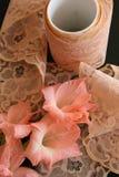 Merletto peach-colored dell'annata Immagine Stock