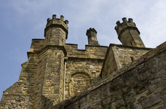 Merli del castello Fotografia Stock