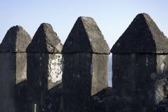 Merli del castello Gibralfaro Fotografia Stock