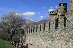 Merli nel castello di Fenis Fotografia Stock