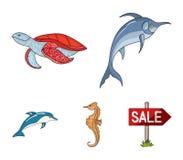 MERLIN, tartaruga ed altre specie Gli animali di mare hanno messo le icone della raccolta nel web dell'illustrazione delle azione illustrazione vettoriale