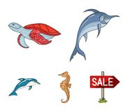 Merlin, turtle and other species.Sea animals set collection icons in cartoon style vector symbol stock illustration web. Merlin, turtle and other species.Sea Royalty Free Stock Photo