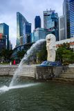 Merlion雕象喷泉在有日出的Merlion公园,新加坡 免版税库存图片