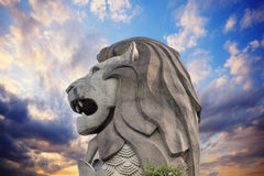 Merlion Obraz Royalty Free