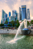 The Merlion  fountain and Marina Bay Sands, Singapore. Royalty Free Stock Photo