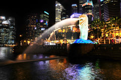 Merlion fountain at night Stock Photos