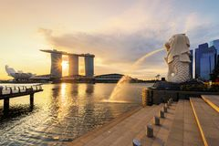 Merlion and Marina Bay Sands with skyscraper buildings in Singapore Downtown and Financial district at sunrise royalty free stock image