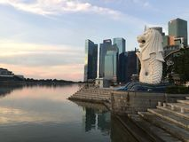 Merlion in Singapore Stock Fotografie