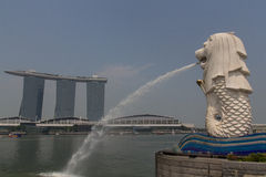 Merlion in Singapore Stock Images