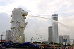 Merlion square in Singapore Royalty Free Stock Photos