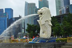 The Merlion statue in front of commercial and business district of Singapore. Skyline of the financial district of Singapore taken at dusk. The buildings shows Royalty Free Stock Image