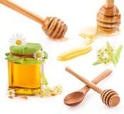 Merlo acquaiolo del miele e miele in vaso di vetro con i fiori Fotografia Stock