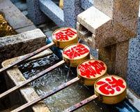 Merlo acquaiolo giapponese Fotografie Stock